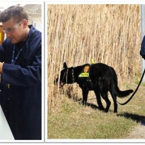 Обучение собак поиску тел погибших будет усовершенствовано